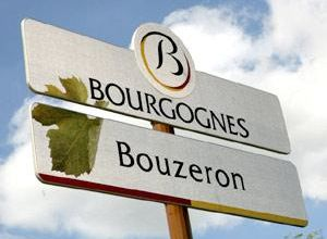 bouzeron-1619-1-1